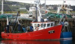 Fishingboat / Dingle Harbour