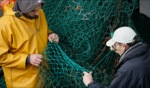 Netting / Dingle Harbour