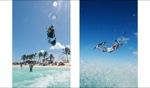 Cowwreck Beach / Dave Blair, Anegada