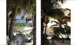 Paradise II / Necker Island, BVI
