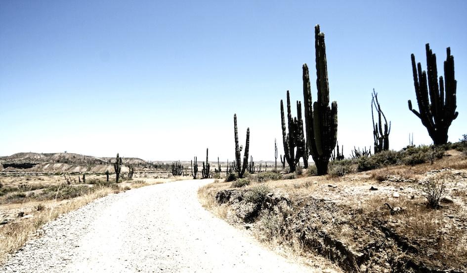 Only 1 beer to Punta San Carlos? / Desert Road, Baja California