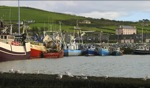 Dingle Harbour / Dingle, Irland