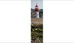 Lighthouse / Le Vivier sur Mer