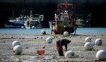 Harbour live / Le Vivier sur Mer