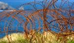 Rust / Camaret sur Mer