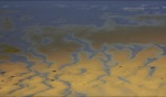 Beach Reflections / Fistral Beach, Cornwall