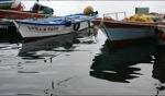 Fischerboot / O Grove, Galicia
