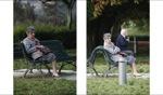 Im Park / Santiago de Compostela, Galicia