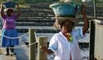 Hard work / Tamarin, Mauritius