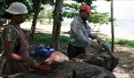 Fisherman / Le Morne, Mauritius
