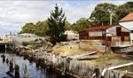 Sawmill / Straham, Tasmania