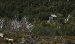 Overland Track / Cradle Mountain, Tasmania