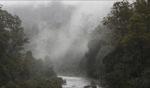 Fog drifting... / Derwent River, Tasmania