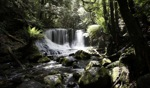 Horse Shoe Falls / Mount Field National Park, Tasmania