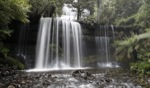 Russel Falls / Mount Field National Park, Tasmania