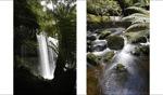 Falls / Nelson Falls, Tasmania