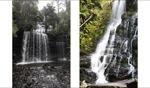 Russel Falls / Tasmania