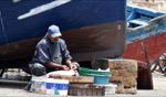 Harbour / Essaouira